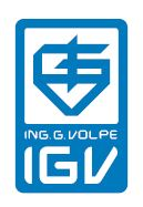 IGV Group Logo